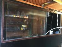 Black Reptile Vivarium and Equipment