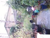 YOUR LEWISHAM AREA 1 BED GROUND FLOOR FLAT WITH OWN OUTDOOR SPACE FOR KENTISH TOWN 1 BED GARDEN FLAT
