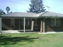Large family and pet friendly home. Muswellbrook Muswellbrook Area Preview