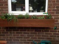 Window box /planter