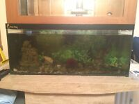 Large Fishing Tank Including Accessories