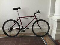 SPECIALIZED Retro Mountain Bike (Needs work)