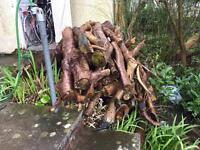 Firewood, seasoned