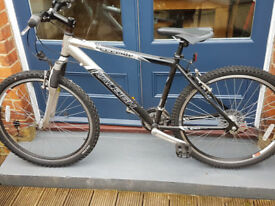 Raleigh Freeride LX Mountain Bike