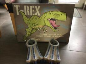 Dinosaur canvas and feet
