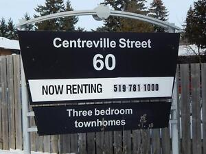 Renovated 3 Bedroom Town homes Available Feb 1st Kitchener / Waterloo Kitchener Area image 1