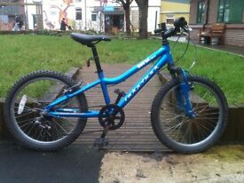 Boys Ridgeback MX20 Mountain Bike