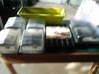 seed trays plus other garden stuff