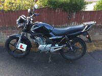 Yamaha ybr 125 roadster