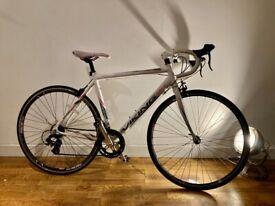 Fast Lightweight Viking Racer Bike