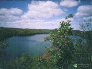 $64,000 - Residential Lot for sale in Cloyne