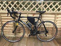 Pinarello Treviso Aluminium 6061T6 Bike (brand new never used)