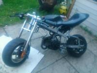 Mini moto motorcycle