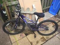 Girls 24in bike