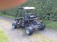 quadzilla 150auto buggy