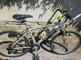 Mountain bike (marin)