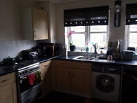 Double room in spacious 2 bed flat to rent near Eltham, £500 pcm! Good transport links