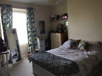 Large Double Room to rent in Cotham/Redland
