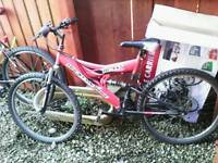 Mountain bike full suspension red