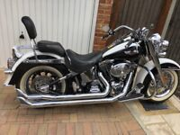 2004 Harley Davidson Softail Deluxe. Excellent condition and only 2 owners.