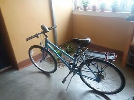 Lady's bicycle Raleigh Calypso