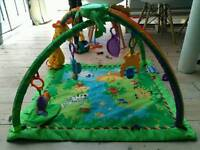 Fisher price rain forest baby gym
