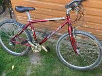 Specialized hard rock sport mountain bike