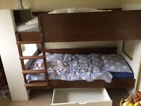 Aspace coco bunk beds