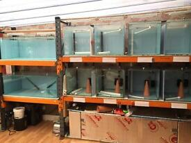 Stand alone Fish tank rack complete set up
