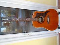 12 - string Italian EKO guitar