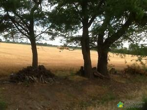 $129,000 - Residential Lot for sale in Essex
