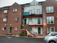Room to rent - Stranmillis Reach Belfast