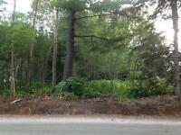 Sundridge- level lot ideal for building