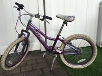 "Raleigh girls 20"" aluminium bike"