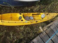 Kayak perseption catch 390