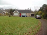 3 BED DETACHED BUNGALOW TO RENT DUNGANNON/MOY