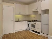 Spacious 1 DOUBLE BEDROOM flat just 2 minutes from BALHAM STATION - Chestnut Grove, Balham SW12