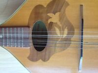 Vintage Romanian Mandolin from Reghin. Floral design and curved bow back