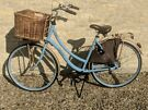 Two Authentic Dutch Bicycles, Excellent Condition
