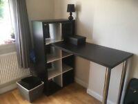 Standing desk and shelves