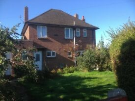 Large Detached House to share