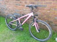 Girls pink trek mountain bike