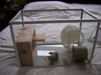cage for hamster, mouse etc, glass tank with accessories