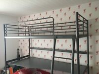 Metal Framed Loft Bed and Desk