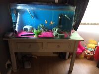Fish tank with stand everything with it plus the fish
