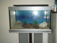 Small Aquarium with stand & accessories (pending collection)