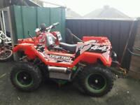 Xtreme 36v electric quad