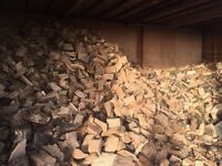 Hardwood seasoned logs