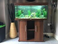 Jewel 180 fish tank