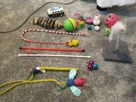 Cat toys / accessories
